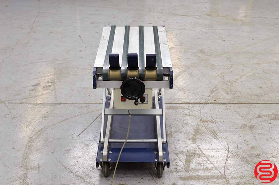 Wahli Tape Delivery Conveyor
