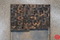 Assorted Letterpress Wood Type - 052919030048