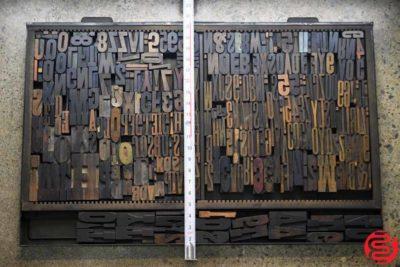 Assorted Letterpress Wood Type - 022120023250