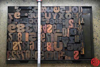 Assorted Letterpress Wood Type - 022120023830