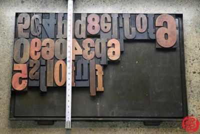 Assorted Letterpress Wood Type - 022120033550