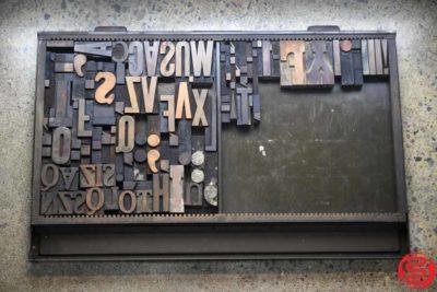 Assorted Letterpress Wood Type - 022120042625