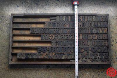 Assorted Letterpress Wood Type - 022120105430