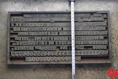 Assorted Letterpress Wood Type - 022120113315