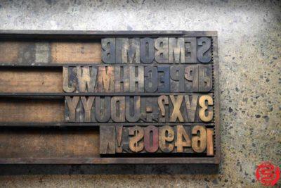 Assorted Letterpress Wood Type - 022120125830