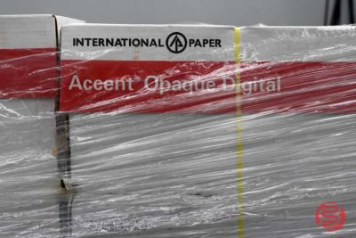 Assorted Paper - 101220080730